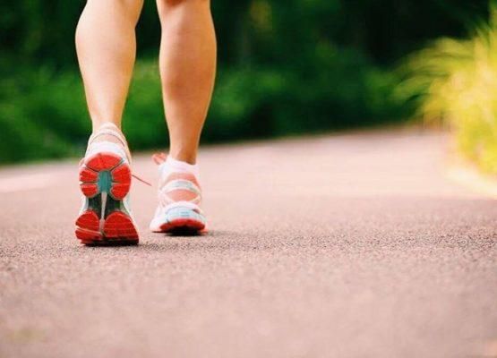 Fitness: Planejar para colher