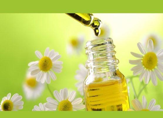 Maternidade: Benefícios da Aromaterapia