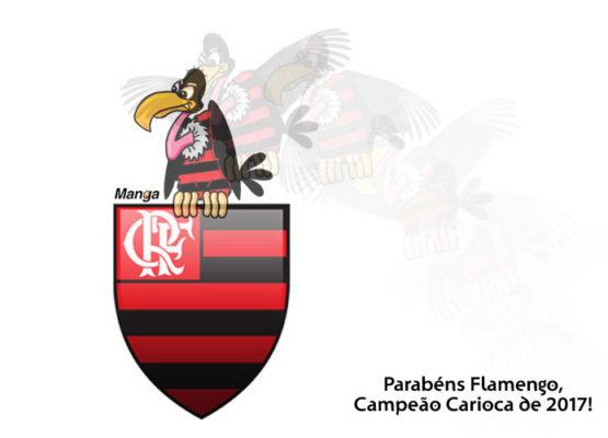 Clique e veja a animação do campeão Flamengo