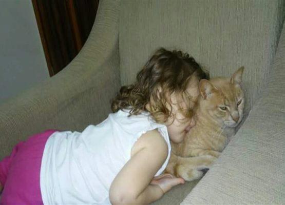 Silene Silva: A imunização através do amor pet