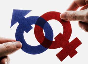 Lilian Schiavo: Igualdade de gêneros na sociedade