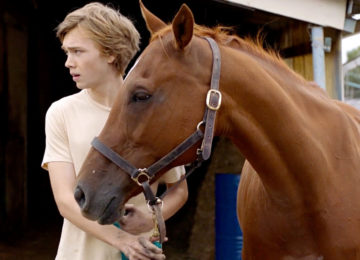 Crítica: A Rota Selvagem (Lean on Pete) | 2017