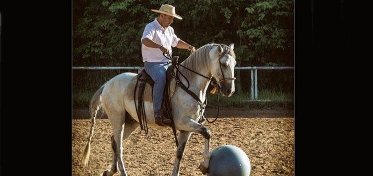 Flávia Raucci: O fascinante mundo dos cavalos
