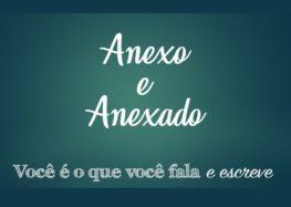 Fernanda Bedran: Anexo e anexado