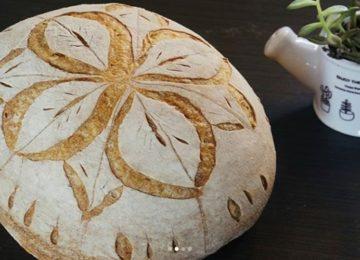 Priscilla Bisognin: Mas afinal, o que é fermentação natural?