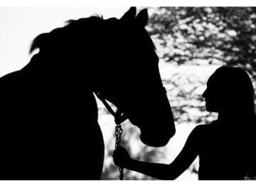 Flávia Raucci:O papel do cavalo no tratamento da depressão