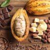 Priscilla Bisognin - Chocolate: sabe como é produzida essa delícia?