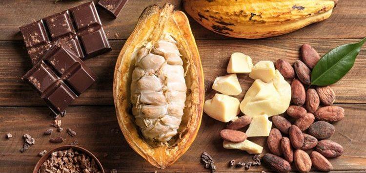 Priscilla Bisognin – Chocolate: sabe como é produzida essa delícia?