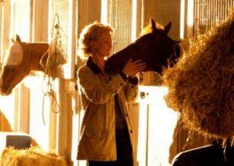 Flávia Raucci: 10 filmes para quem ama cavalos