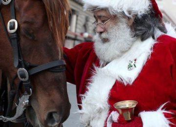 "Flávia Raucci: ""Feliz Natal a Cavalo!"""