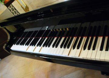 George Ross: Desvalorização musical