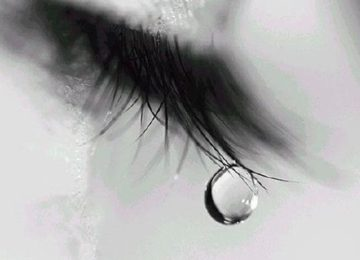 Aparecida Miranda: Dor e luto