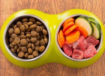 Rodrigo Donati: Dietas comerciais X alimentação natural