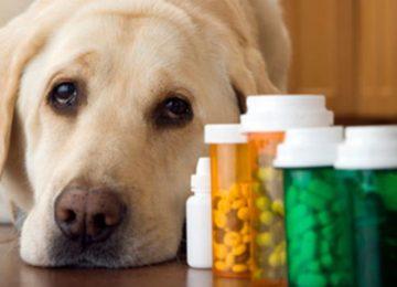 Rodrigo Donati: Uso inadequado de medicações