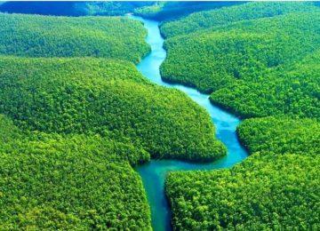 Carla Martins – Brasil: um país de virtudes e riquezas