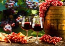 Iramaia Loiola: Minhas uvas preferidas