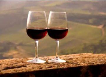 Iramaia Loiola: Novos tempos com o Querido Vinho