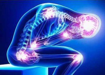 Carol Ragozzino: Fibromialgia, um olhar multidisciplinar