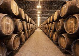 Iramaia Loiola: Querido Vinho em barricas