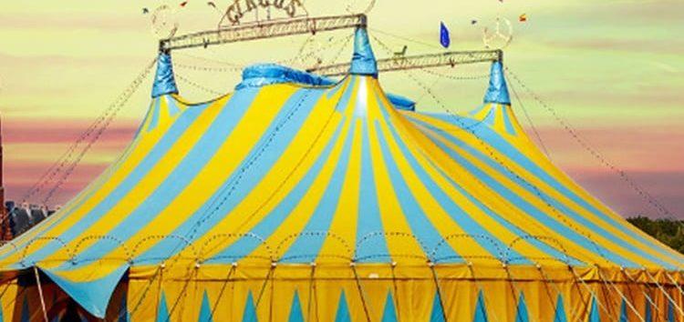 Sônia Pezzo: O circo