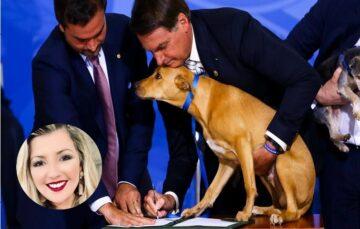 Milena Wydra: A nova lei contra maus-tratos de animais, vale a pena conhecer!