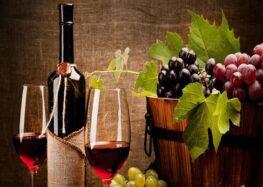 Iramaia Loiola: Vinho orgânico, biodinâmico e natural.