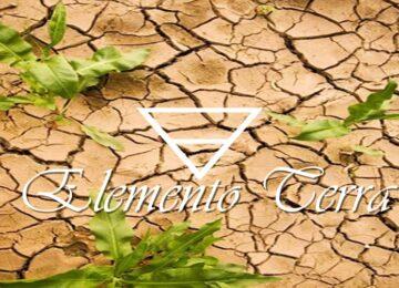 Ana Lessa: O Elemento Terra e seu potencial terapêutico – Parte II