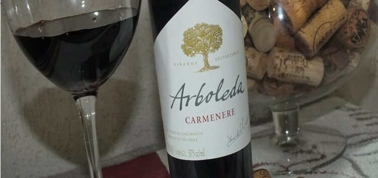 Iramaia Loiola: Dica de vinho classudo!